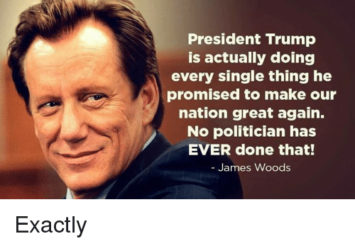 Memes, Trump, and James Woods: President Trump  is actually doing  every single thing he  promised to make our  nation great again.  No politician has  EVER done that!  James Woods Exactly