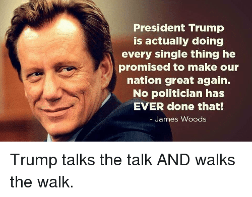 Trump, James Woods, and Single: President Trump  is actually doing  every single thing he  promised to make our  nation great again.  No politician has  EVER done that!  James Woods