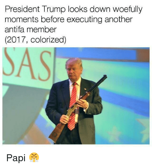 Trump, Dank Memes, and Another: President Trump looks down woefully  moments before executing another  antifa member  2017, colorized)