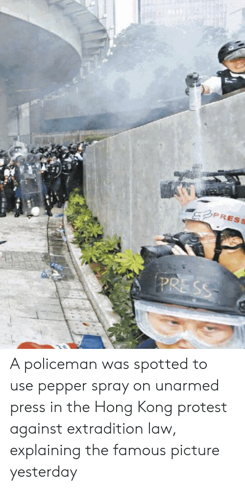 Protest, Hong Kong, and Pepper: PRESS  PRESS A policeman was spotted to use pepper spray on unarmed press in the Hong Kong protest against extradition law, explaining the famous picture yesterday
