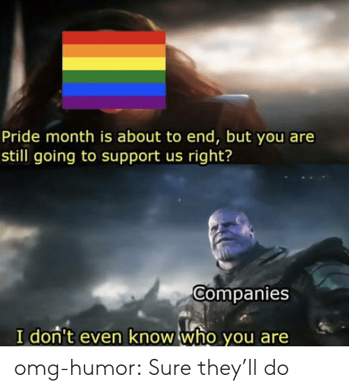 Omg, Tumblr, and Blog: Pride month is about to end, but you are  still going to support us right?  Companies  I don't even know who you are omg-humor:  Sure they'll do