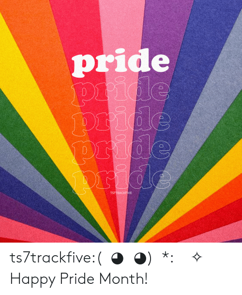 Tumblr, Blog, and Happy: pride  pride  pride  pride  ride  TS7TRACKFIVE ts7trackfive:(ノ◕ヮ◕)ノ*:・゚✧ Happy Pride Month!