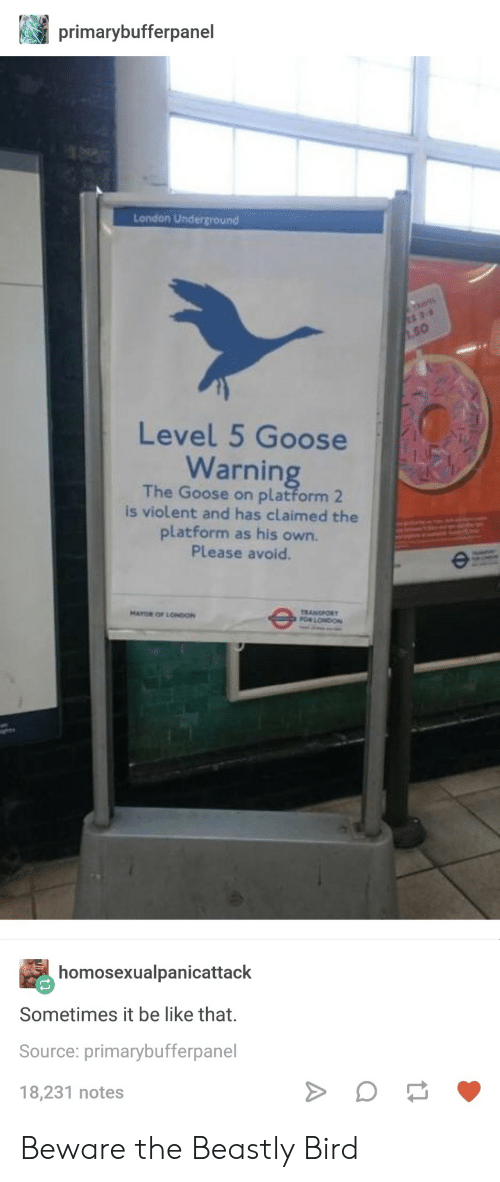 Be Like, London, and Beastly: primarybufferpanel  London Underground  50  Level 5 Goose  Warnin  The Goose on platform 2  is violent and has claimed the  platform as his own.  Please avoid  TRANSPORT  FOR LONDON  MAYOR OF LONIO  homosexualpanicattack  Sometimes it be like that.  Source: primarybufferpanel  18,231 notes Beware the Beastly Bird