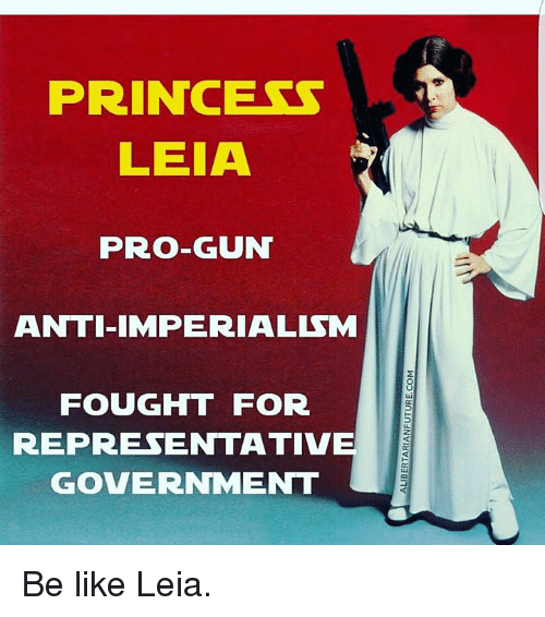 Memes, Princess Leia, and Princess: PRINCESS  LEIA  PRO-GUN  ANTI IMPERIALISM  FOUGHT FOR  REPRESENTATIVE  GOVERNMENT Be like Leia.