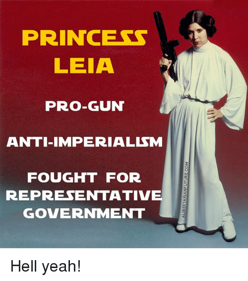 Memes, Princess Leia, and 🤖: PRINCESS  LEIA  PRO-GUN  ANTI IMPERIALISM  FOUGHT FOR  REPRESENTATIVE  GOVERNMENT Hell yeah!