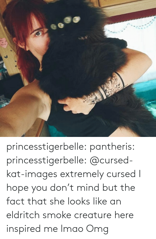 Lmao, Omg, and Tumblr: princesstigerbelle:  pantheris:   princesstigerbelle: @cursed-kat-images extremely cursed  I hope you don't mind but the fact that she looks like an eldritch smoke creature here inspired me lmao   Omg