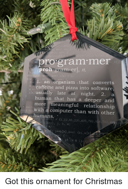 Christmas, Pizza, and Computer: pro gram mer  proh-gram-er], /n,  kell k++) 1  2  an organism that converts  caffeine and pizza into software,  tusually late at night. 2. a  human that has a deeper and  more meaningful relationship  with a computer than with other  +1]  {1,12,66 ,220,495,792,924,  .# Got this ornament for Christmas