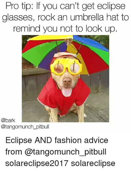 pro tip if you cant get eclipse glasses rock an 27260038 25 best umbrella hat memes revengeance memes, must have memes