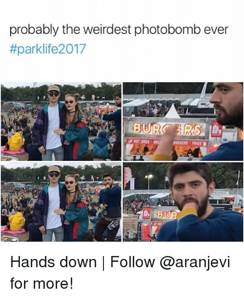 Memes, Photobomb, and 🤖: probably the weirdest photobomb ever  #parklife2017  BURGERS FRIES  PROT Hands down | Follow @aranjevi for more!