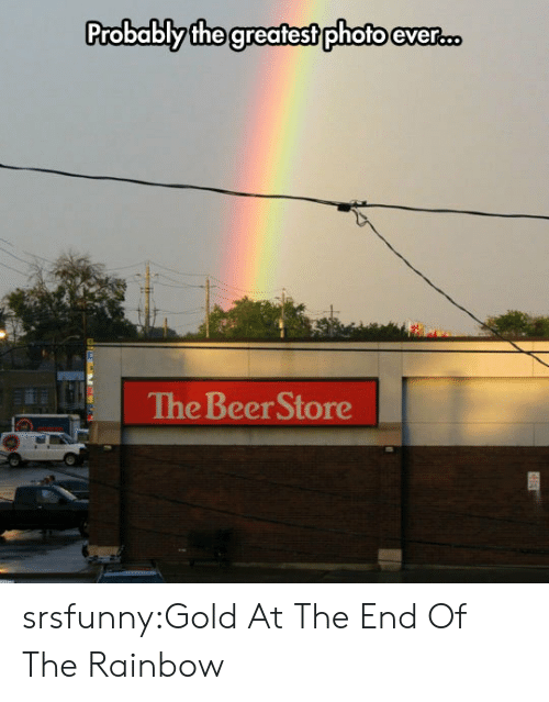 Beer, Tumblr, and Blog: Probablythe greatest photo ever...  The Beer Store srsfunny:Gold At The End Of The Rainbow
