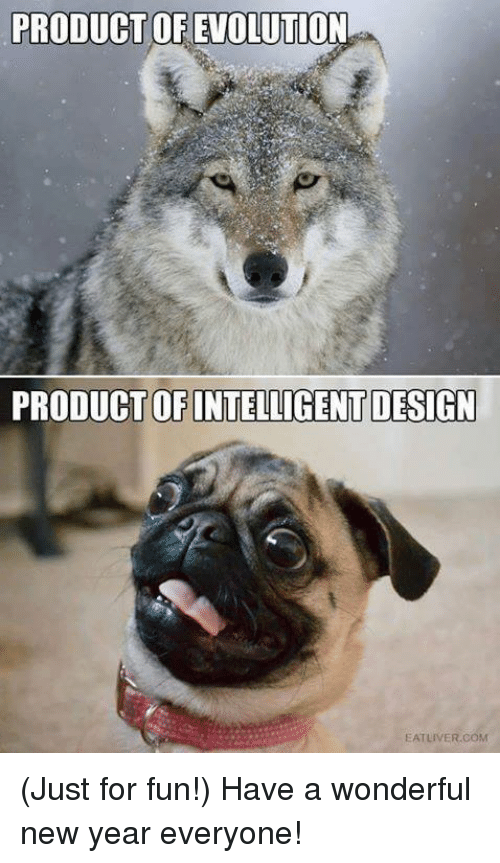 Memes, Evolution, and 🤖: PRODUCT OF EVOLUTION  PRODUCT OF INTELLIGENT DESIGN  EAT LIVER COM (Just for fun!) Have a wonderful new year everyone!
