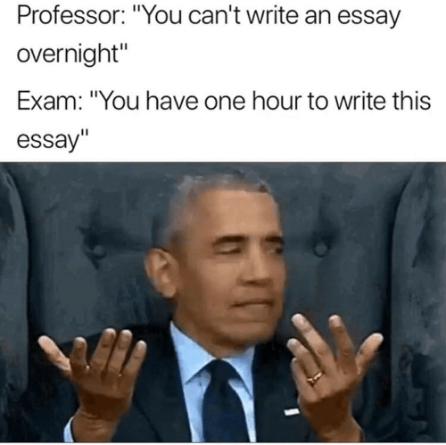Professor You Can't Write an Essay Overnight' Exam You Have One