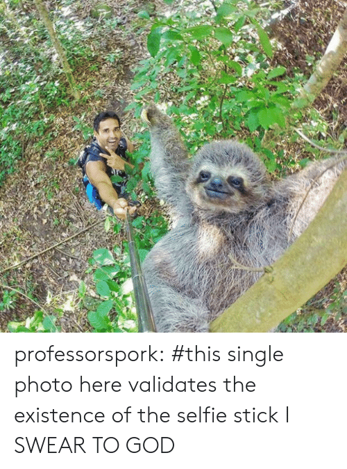 God, Selfie, and Tumblr: professorspork:     #this single photo here validates the existence of the selfie stick I SWEAR TO GOD