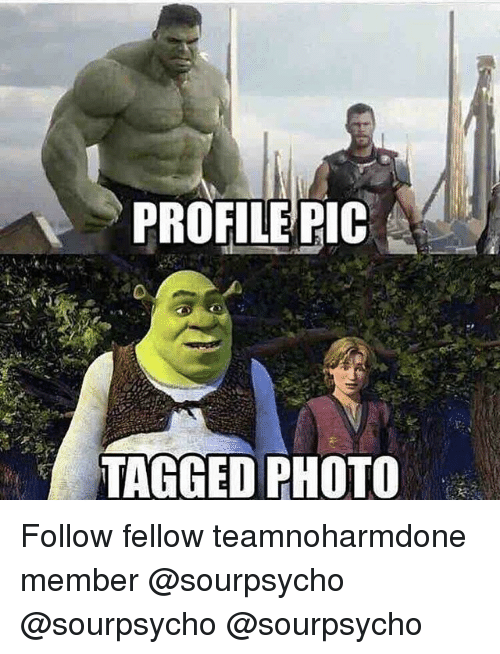 Memes, Tagged, and 🤖: PROFILE PIC  TAGGED PHOTO Follow fellow teamnoharmdone member @sourpsycho @sourpsycho @sourpsycho