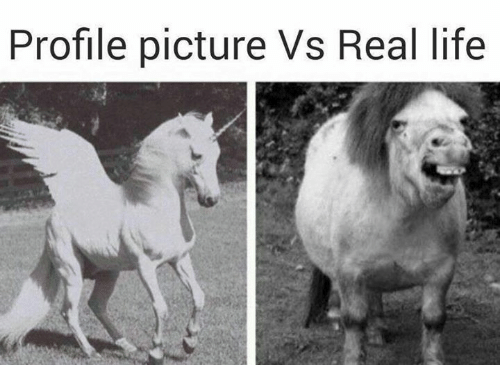 Funny Meme Of Life : Profile picture vs real life funny meme on me.me