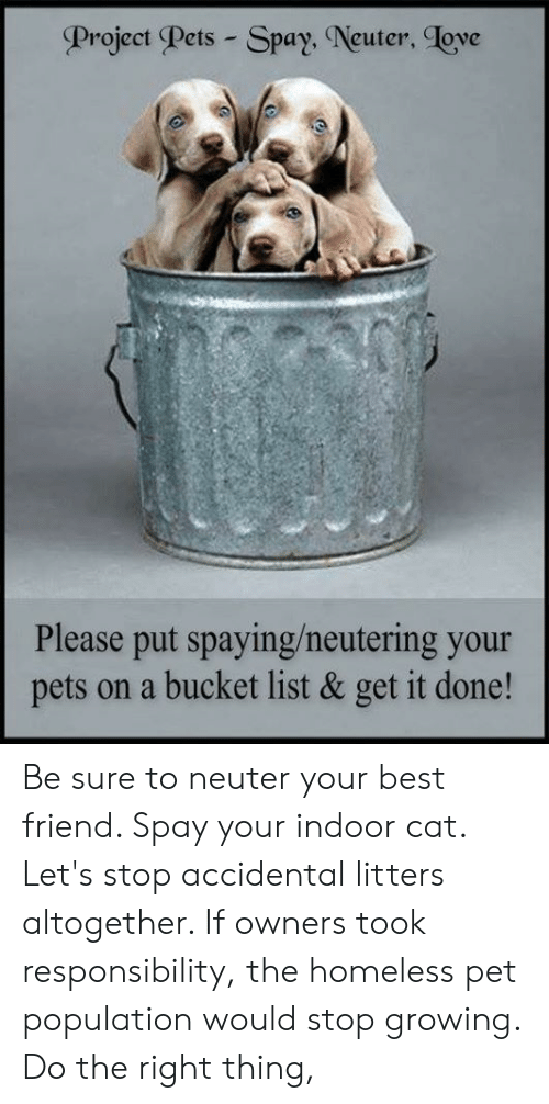 Best Friend, Bucket List, and Homeless: Project Pets - Spa  ay, Neuter, ove  Please put spaying/neutering your  pets on a bucket list & get it done! Be sure to neuter your best friend. Spay your indoor cat. Let's stop accidental litters altogether. If owners took responsibility, the homeless pet population would stop growing. Do the right thing,
