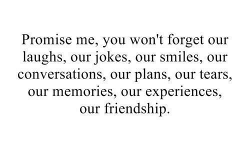 Jokes, Friendship, and Smiles: Promise me, you won't forget our  laughs, our jokes, our smiles, our  conversations, our plans, our tears,  our memories, our experiences,  our friendship