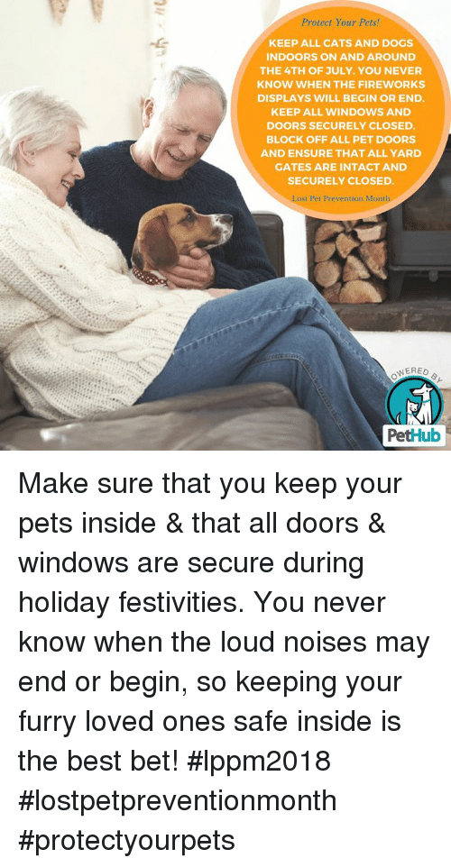 Protect Your Pets Keep All Cats And Dogs Indoors On And Around The