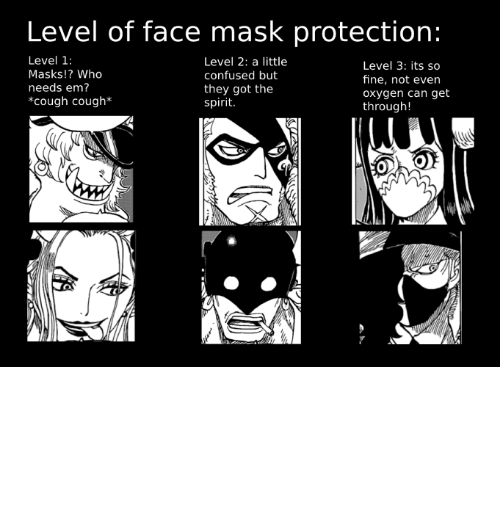 MemePiece, One, and You: Protection comes in many forms, find the right one for you! [chapter 978+]