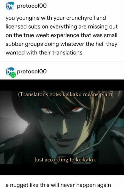 Crunchyroll, Memes, and True: protocolO0  you youngins with your crunchyroll and  licensed subs on everything are missing out  on the true weeb experience that was small  subber groups doing whatever the hell they  wanted with their translations  protocol00  (Translator's note: keikaku means plan)  Just according to keikaku.  a nugget like this will never happen again