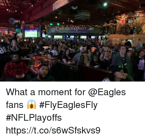 Philadelphia Eagles, Memes, and Philadelphia: Proud Partier of the Philadelphia Eagtes What a moment for @Eagles fans 😱 #FlyEaglesFly #NFLPlayoffs https://t.co/s6wSfskvs9