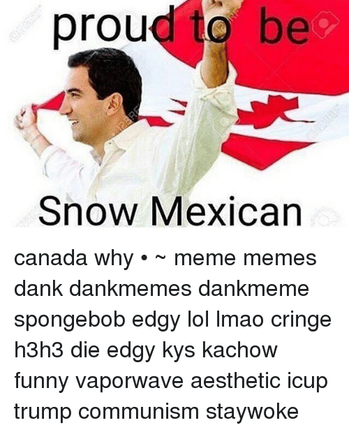 Memes, Aesthetic, and Canada: proud to be  Snow Mexican canada why • ~ meme memes dank dankmemes dankmeme spongebob edgy lol lmao cringe h3h3 die edgy kys kachow funny vaporwave aesthetic icup trump communism staywoke