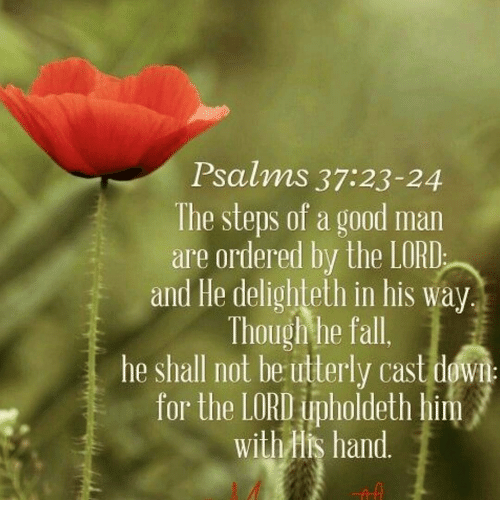Psalms 3723-24 the Steps of a Good Man Are Ordered by the LORD and He  Delighteth in His Way Though He Fall He Shall Not Be Utterly Cast Down for the  LORD