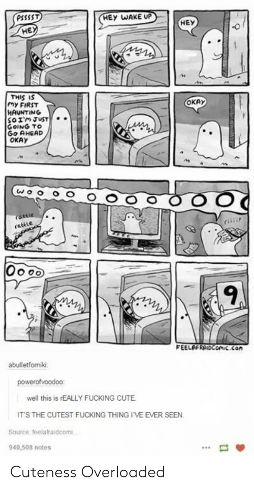 Cute, Okay, and Haunting: PSSSST  HEY WAKE UP  HEY  HE  THIS IS  MY FIRST  HAUNTING  OKAy  GOING TO  Go AHEAD  OKAy  ns  9  FEELAFRAiDConic.con  abulletfomiki  well this is rEALLY FUCKING CUTE  ITS THE CUTEST FUCKING THING I'VE EVER SEEN  Source: feelafraidcomi  940,508 notes Cuteness Overloaded