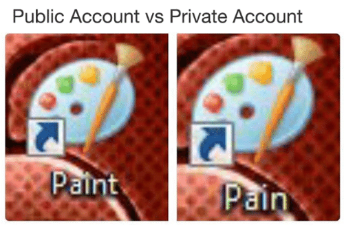 Dank Memes, Accounting, and Private: Public Account vs Private Account  ain