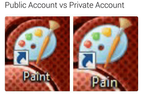 Private, Account, and Int: Public Account vs Private Account  p int  ain