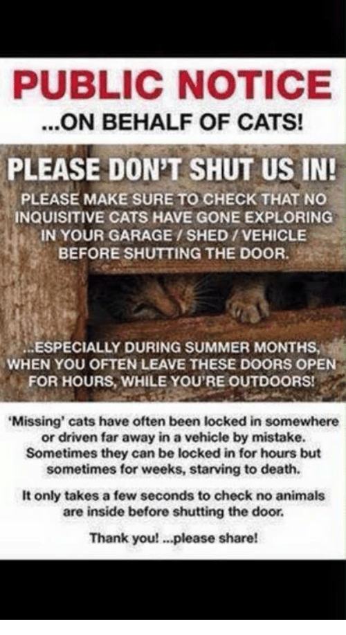 PUBLIC NOTICE ON BEHALF OF CATS! PLEASE DON'T SHUT US IN PLEASE MAKE