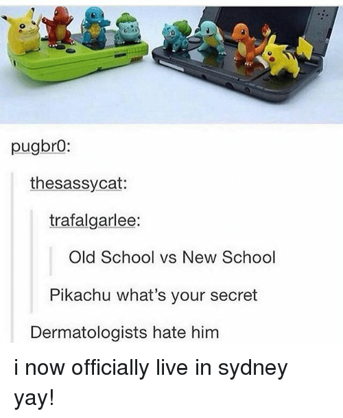 Ironic, Pikachu, and School: pugbro:  the sassy cat  trafalgarlee:  Old School vs New School  Pikachu what's your secret  Dermatologists hate him i now officially live in sydney yay!