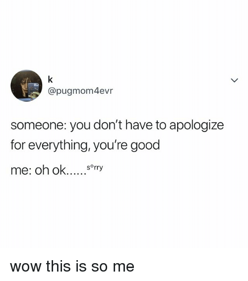 Sorry, Wow, and Good: @pugmom4evr  someone: you don't have to apologize  for everything, you're good  sorry wow this is so me