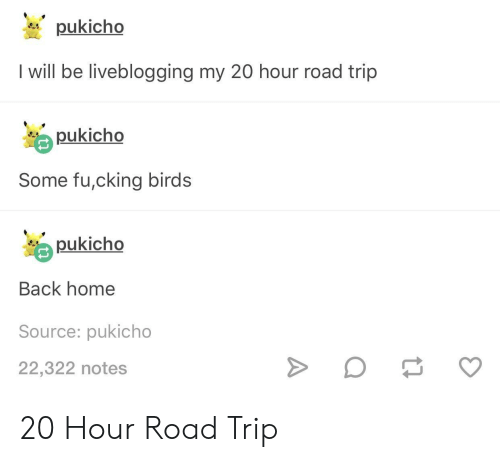 Birds, Home, and Back: pukicho  I will be liveblogging my 20 hour road trip  pukicho  Some fu,cking birds  pukicho  Back home  Source: pukicho  22,322 notes 20 Hour Road Trip