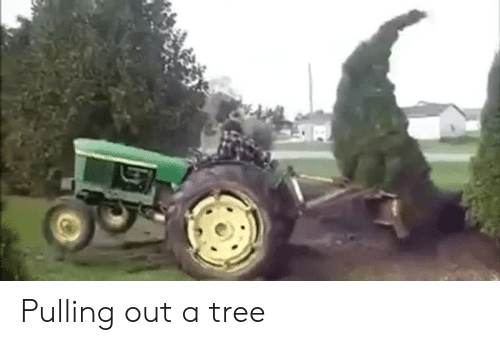 Tree, Pulling Out, and  Pulling: Pulling out a tree