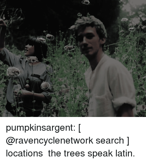 Target, Tumblr, and Blog: pumpkinsargent:  [ @ravencyclenetwork search ] locations the trees speak latin.