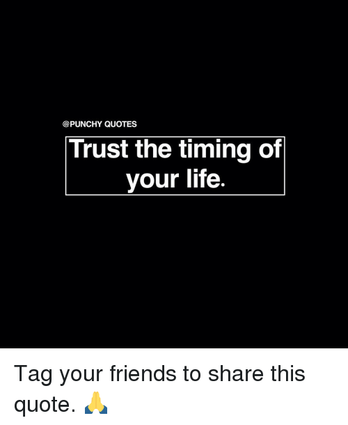 Y Quotes Trust The Timing Of Your Life Tag Your Friends To Share