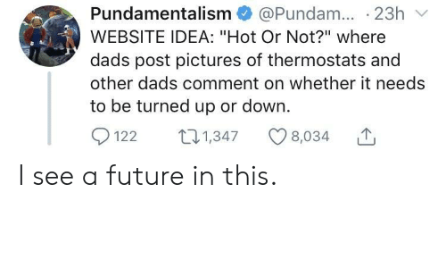 "Future, Pictures, and Idea: Pundamentalism @Pundam. 23h  WEBSITE IDEA: ""Hot Or Not?"" where  dads post pictures of thermostats and  other dads comment on whether it needs  to be turned up or down.  1221347 8,034 I see a future in this."