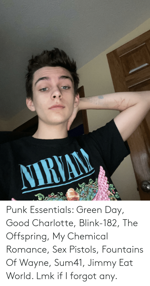 Sex, Charlotte, and Good: Punk Essentials: Green Day, Good Charlotte, Blink-182, The Offspring, My Chemical Romance, Sex Pistols, Fountains Of Wayne, Sum41, Jimmy Eat World. Lmk if I forgot any.