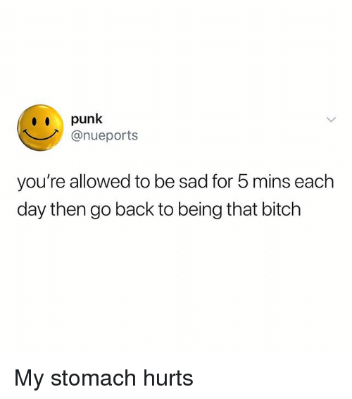 Bitch, Memes, and Sad: punk  @nueports  you're allowed to be sad for 5 mins each  day then go back to being that bitch My stomach hurts