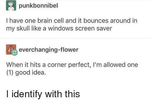 Windows, Brain, and Flower: punkbonnibel  I have one brain cell and it bounces around in  my skull like a windows screen saver  everchanging-flower  When it hits a corner perfect, I'm allowed one  (1) good idea. I identify with this