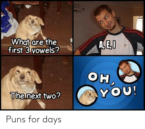 Puns, For, and  Days: Puns for days