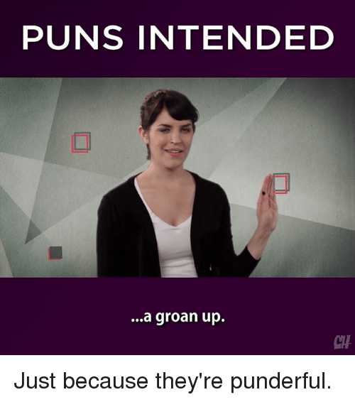 Memes, 🤖, and Pun: PUNS INTENDED  ...a groan up. Just because they're punderful.