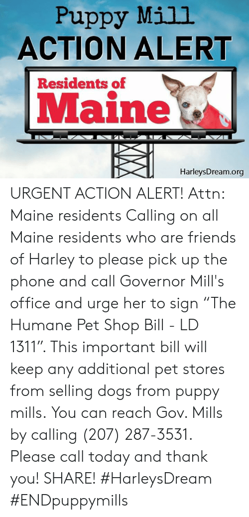 """Dogs, Friends, and Memes: Puppy Mill  ACTION ALERT  Residents of  Maine  HarleysDream.org URGENT ACTION ALERT! Attn: Maine residents  Calling on all Maine residents who are friends of Harley to please pick up the phone and call Governor Mill's office and urge her to sign """"The Humane Pet Shop Bill - LD 1311"""". This important bill will keep any additional pet stores from selling dogs from puppy mills.  You can reach Gov. Mills by calling (207) 287-3531. Please call today and thank you! SHARE!  #HarleysDream #ENDpuppymills"""