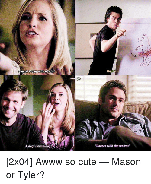 "Cute, Memes, and Wolves: PuppyPuppy with atutu!  No,no  A dog! Hound-dog!  ""Dances with the wolves"" [2x04] Awww so cute — Mason or Tyler?"