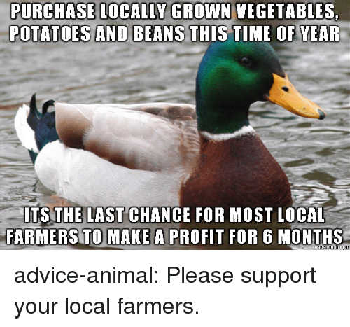 Advice, Tumblr, and Animal: PURCHASE  LOCALLY  GROWN  VEGETABLES,  POTATOES AND BEANS THIS TILE OF VEAR  TS THE LAST CHANCE FOR MOST LOCAL  FARMERS TO MAKE A PROFIT FOR 6 MONTHS advice-animal:  Please support your local farmers.