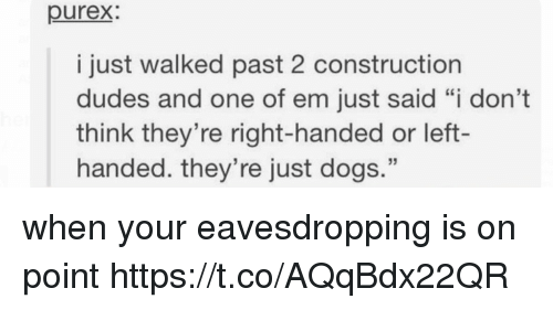"""Dogs, Memes, and Construction: purex  i just walked past 2 construction  dudes and one of em just said """"i don't  think they're right-handed or left-  handed. they're just dogs."""" when your eavesdropping is on point https://t.co/AQqBdx22QR"""