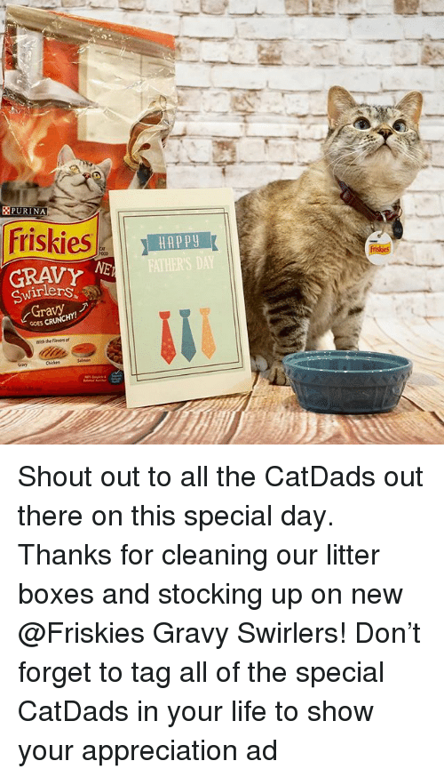 Life, Memes, and Crunchy: PURINA  Friskies  GRAVY  Gravy  CRUNCHY!  GOES HAP py  FATHERS DAT Shout out to all the CatDads out there on this special day. Thanks for cleaning our litter boxes and stocking up on new @Friskies Gravy Swirlers! Don't forget to tag all of the special CatDads in your life to show your appreciation ad