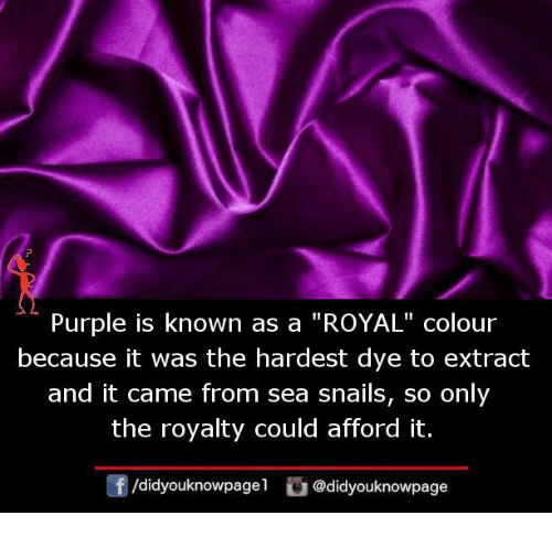 Memes Purple And Is Known As A Royal Colour