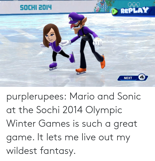 Tumblr, Winter, and Mario: purplerupees: Mario and Sonic at the Sochi 2014 Olympic Winter  Games is such a great game. It lets me live out my wildest fantasy.